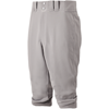 Mizuno Premier Short Pants Grey