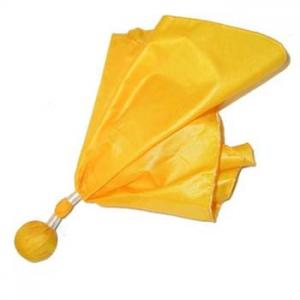 Adams Penalty Flag