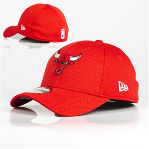 New Era NBA Chicago Bulls Logo Pack 39Thirty